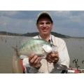 Crappie Panfish
