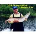 Muskie Pike